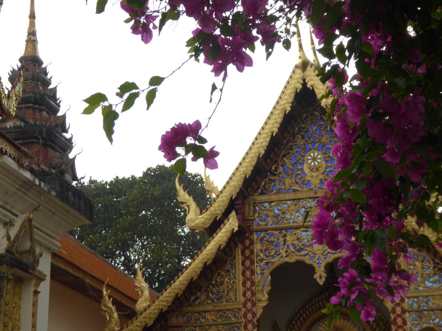 Pic5-雙龍寺建於素貼山山頂,寺院內奇花異草伴著亭台樓閣,色彩斑斕.jpg